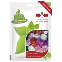 Benih Bunga Balsam TOM TOM MIX - Panah Merah / East West Seed