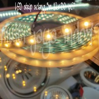 led strip fleksibel dc 12V 5meter 5M ip67/lampu fleksibel strip 5M - Warm White