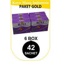 PAKET GOLD KOYO MAAG INDONESIA