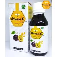 Madu Herbal Pelangsing Badan - Pluma 6