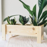 Pot Kayu Kaktus Suculent | Wooden Planter Box Cactus Succulent 35cm