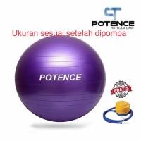 POTENCE GYMBALL ANTI BURST 65 cm / Gym ball / Bola Yoga / Gymball 65cm