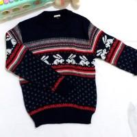 PL sweater rajut anak laki