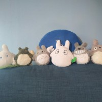 Set Boneka Totoro