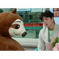 Boneka Kukang Drama Korea BackstreetRookie Import 65cm