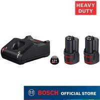 Bosch Stater Kit 12 Volt 2.0 ah