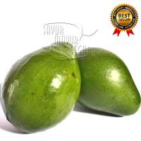 Alpukat Mentega Lampung super Premium Buah Segar dan Manis