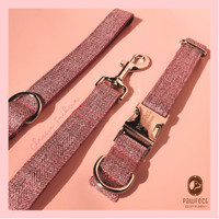 Pawfect Dog Collar & Leash / Kalung Tali Anjing - Classic Fuschia - Collar, XS