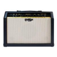 Ampli Gitar 40W Rock You GT-40 Combo Amp Guitar Amplifier