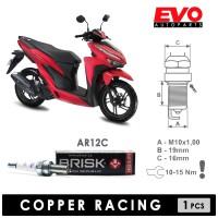 Busi Motor BRISK COPPER AR12C untuk VARIO