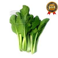 Caisim / sawi hijau fresh 500 gram (sayuran)