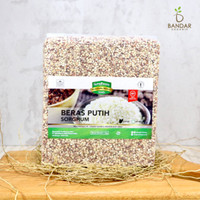 Beras Sorghum Putih 1kg / White Sorghum Rice - Sorghum Foods - Sorghum Kupas