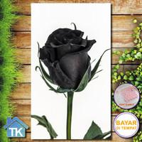 Hiasan Dinding Rose Black / Dekorasi Rumah / Hiasan Kamar / / Poster