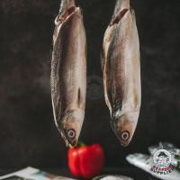 Ikan Bandeng Cabut Duri Beku / Ikan Bandeng Tanpa Duri Frozen