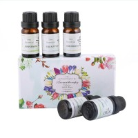 Pure Essential Oil Gift Set Aromatheraphy Diffusers 10ml 5 pcs