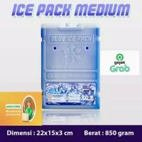 Ice Pack Kotak Sedang Untuk Cooler Box Pengganti Dry Ice