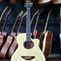 Gitar Akustik Yamaha APX 500 II Natural Glossy