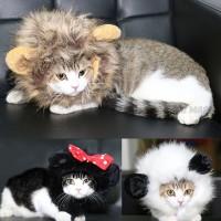 Baju Kostum Kucing Anjing Model Wig / Rambut Singa Super Lembut - Cokelat