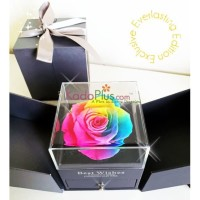 Everlasting Rainbow Rose Box