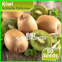 Bibit Benih Biji Kiwi Bonsai / Bonsai Kiwi Import
