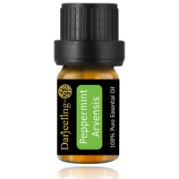 5ml Peppermint Essential Oil / Minyak Daun Mint 100% Murni