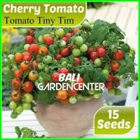 Benih Biji Tomat - Tomato Tiny Tim