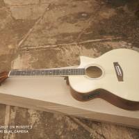 gitar akustik elektrik gitar syprus cort