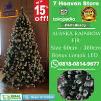 Pohon Natal 2m 2 Meter 210cm 7FT 7 feet Alaska Rainbow Fir Tree