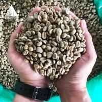 Specialty-Green Bean - Black Honey Arabica - Flores Manggarai-Kartika