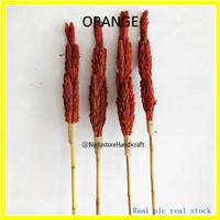 stick bunga cantel kering