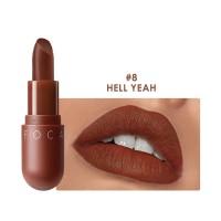 FA87 FOCALLURE NEW Matte lipstick red brown velvet lip Kosmetik #08