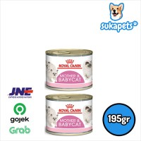 Royal Canin Mother & Baby Mousse Makanan Induk & Anak Kucing Wet 195gr