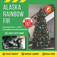 BEST SELLER Pohon Natal Salju 1,5 Meter / 5Ft ALASKA RAINBOW FIR TREE