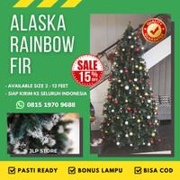 BEST SELLER Pohon Natal Salju 2 Meter / 7Ft ALASKA RAINBOW FIR TREE