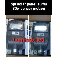 lampu pju solar panel 30w 30watt jalan led tenaga surya matahari 30 w