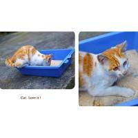 Cat Litter Box 3 in 1 Self Sifting Tray Dog Cat Box Pasir Kucing
