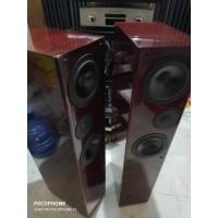 speaker diy hi end audio Mr.Maliom trans line 92 dB 8 watt Visaton