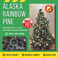 Pohon Natal Salju 1,8 Meter 6Ft Alaska Rainbow Pine Pinus BONUS LAMPU