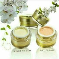 cream oxyglow/oxy glow dr. andini/cream pelicin/glowing/oxy glow ori