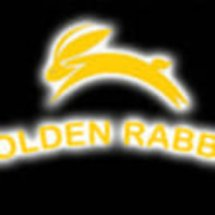 Logo Golden Rabbit Sport