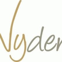 Logo Vyden Shop
