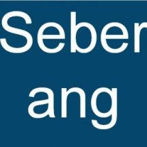 Logo Seberang