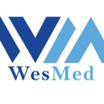 PT Wesmed Logo