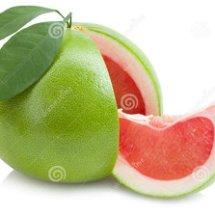 Logo jerukbali