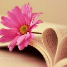 Logo Dapur Buku Rohani