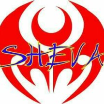 Logo sheva5566