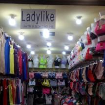 Logo ladylikes