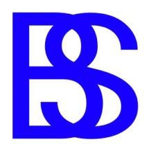 BlueStore Elektronik Logo