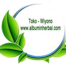 Logo Toko Wiyono