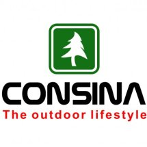 Logo Consina Store